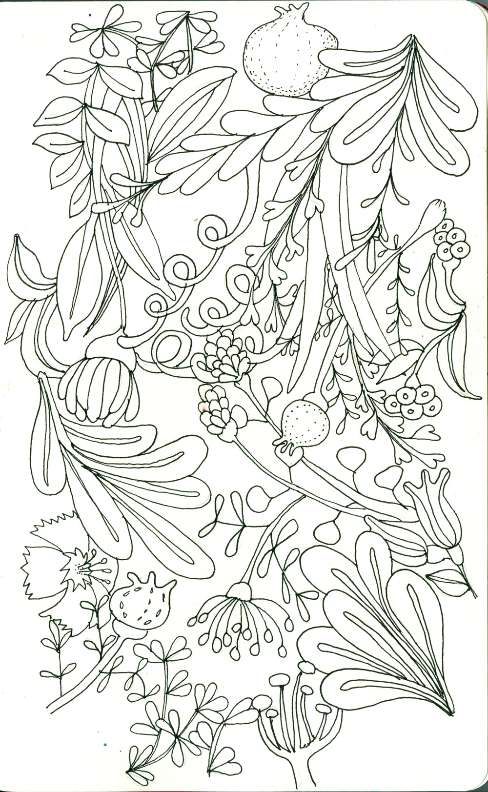venus-flowers-sketch